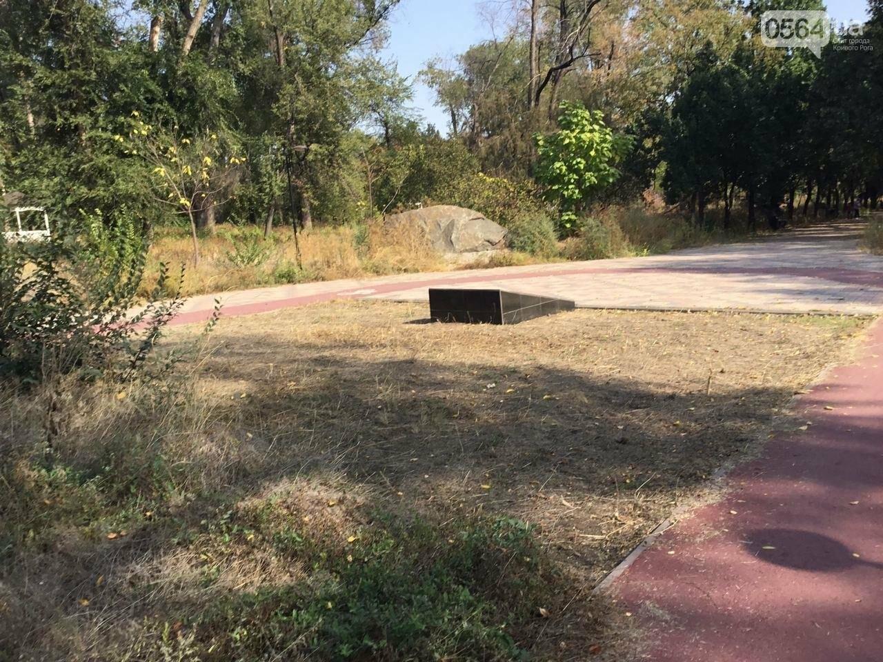 """""""Политика и бесхозяйственность"""", - криворожане поделились мнениями о Гданцевском парке, - ФОТО, ВИДЕО, фото-35"""