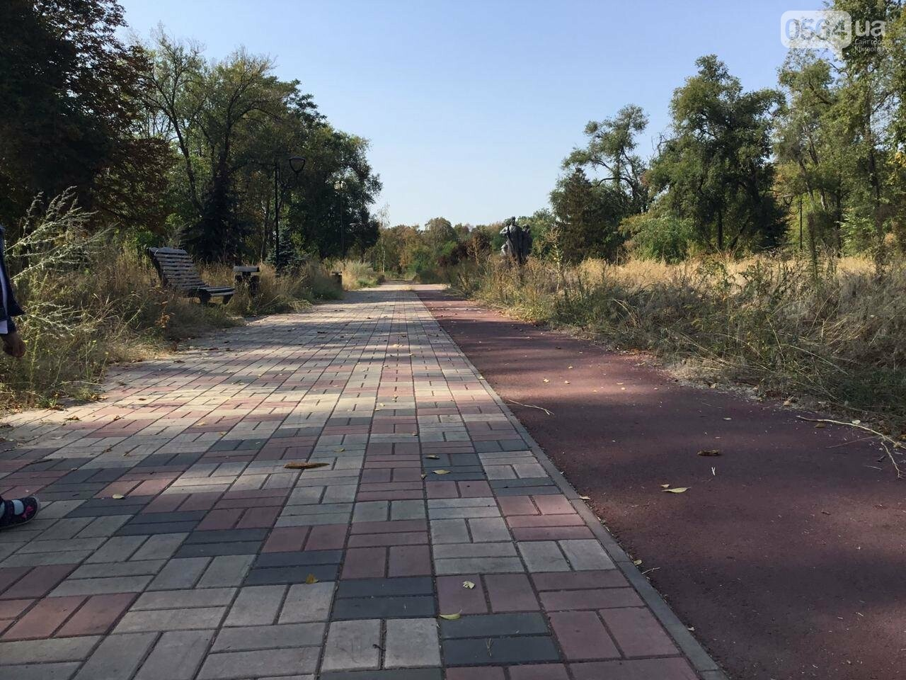 """""""Политика и бесхозяйственность"""", - криворожане поделились мнениями о Гданцевском парке, - ФОТО, ВИДЕО, фото-34"""