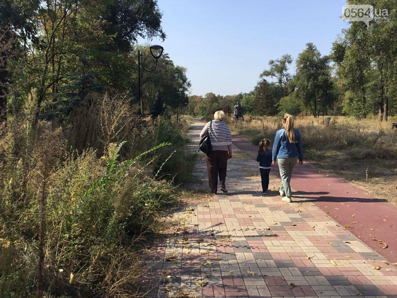 """""""Политика и бесхозяйственность"""", - криворожане поделились мнениями о Гданцевском парке, - ФОТО, ВИДЕО, фото-32"""