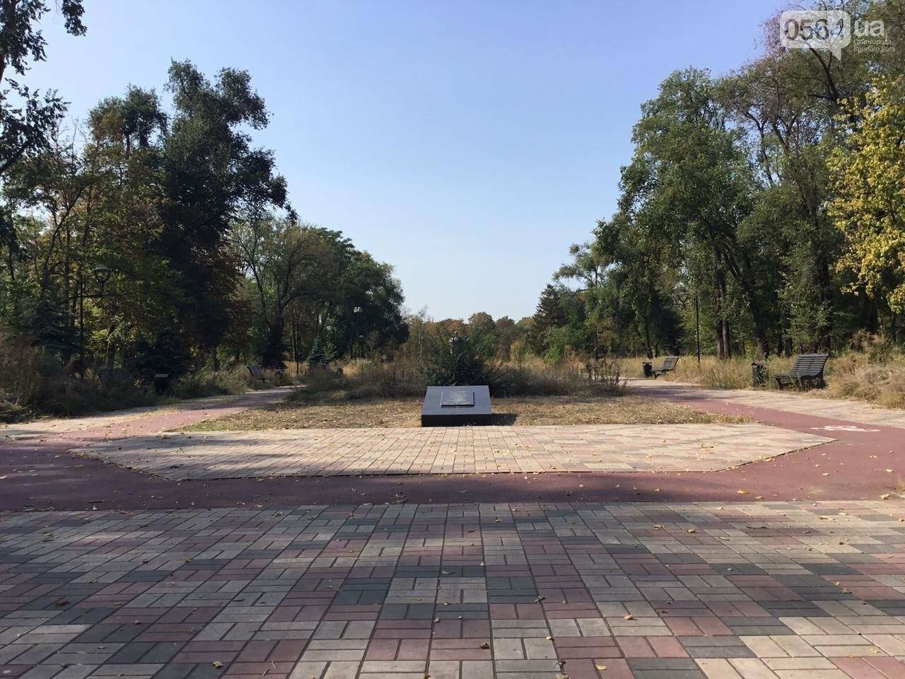 """""""Политика и бесхозяйственность"""", - криворожане поделились мнениями о Гданцевском парке, - ФОТО, ВИДЕО, фото-30"""