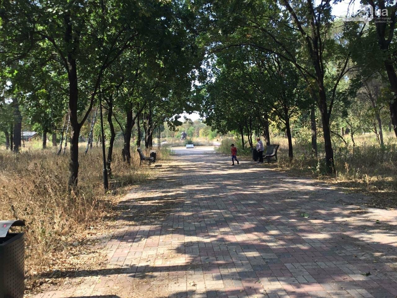 """""""Политика и бесхозяйственность"""", - криворожане поделились мнениями о Гданцевском парке, - ФОТО, ВИДЕО, фото-25"""