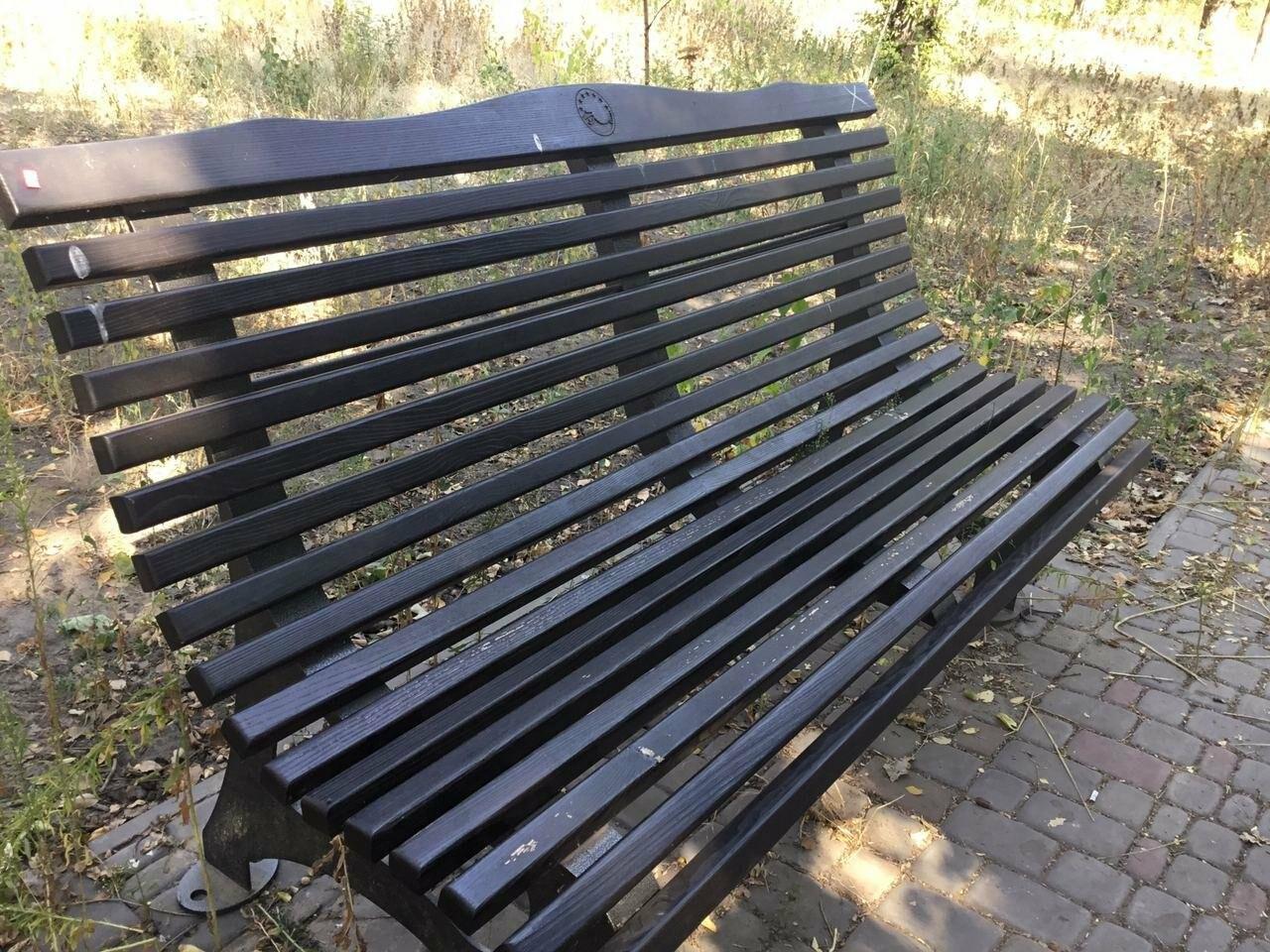 """""""Политика и бесхозяйственность"""", - криворожане поделились мнениями о Гданцевском парке, - ФОТО, ВИДЕО, фото-23"""