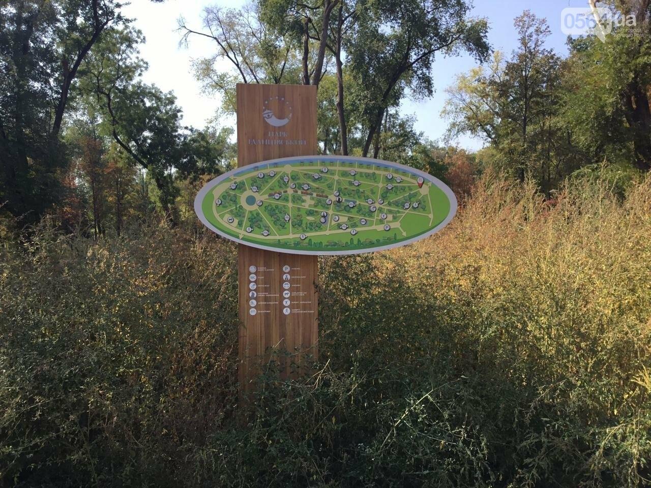 """""""Политика и бесхозяйственность"""", - криворожане поделились мнениями о Гданцевском парке, - ФОТО, ВИДЕО, фото-3"""