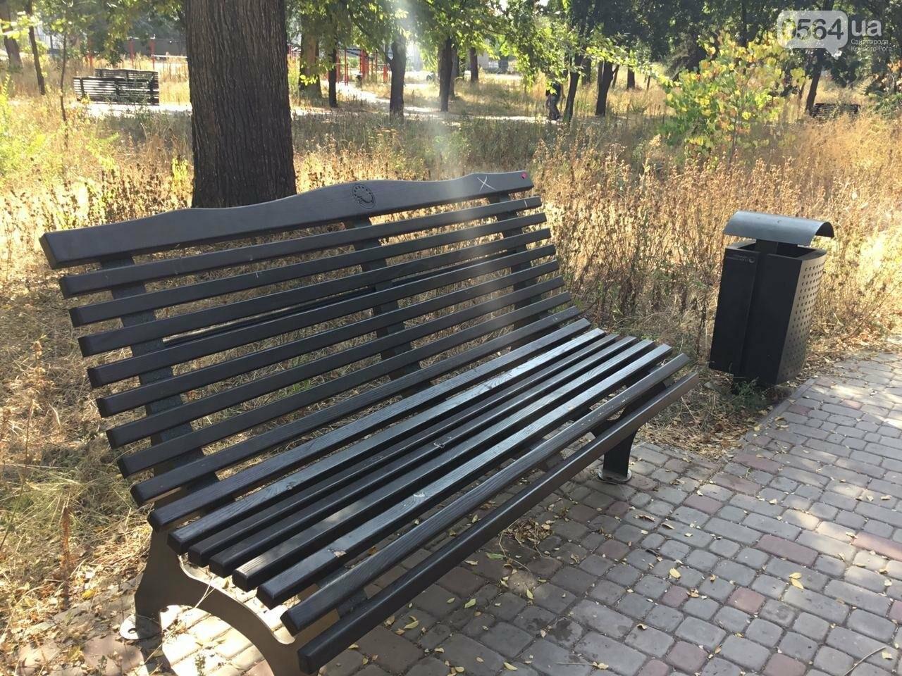 """""""Политика и бесхозяйственность"""", - криворожане поделились мнениями о Гданцевском парке, - ФОТО, ВИДЕО, фото-17"""