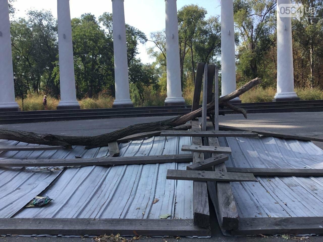 """""""Политика и бесхозяйственность"""", - криворожане поделились мнениями о Гданцевском парке, - ФОТО, ВИДЕО, фото-4"""