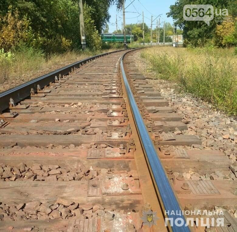 В Кривом Роге задержали мужчину, разбиравшего железную дорогу по частям, - ФОТО , фото-3