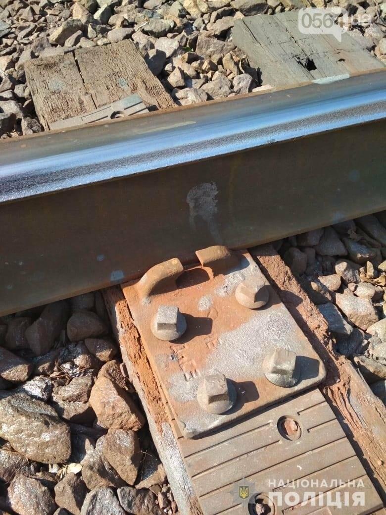 В Кривом Роге задержали мужчину, разбиравшего железную дорогу по частям, - ФОТО , фото-1