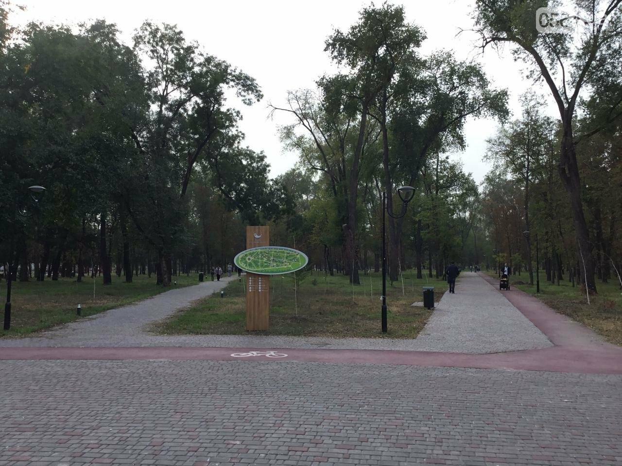 В Гданцевском парке наводят порядок. Как выглядит парк после покоса амброзии, - ФОТО, ВИДЕО, фото-2