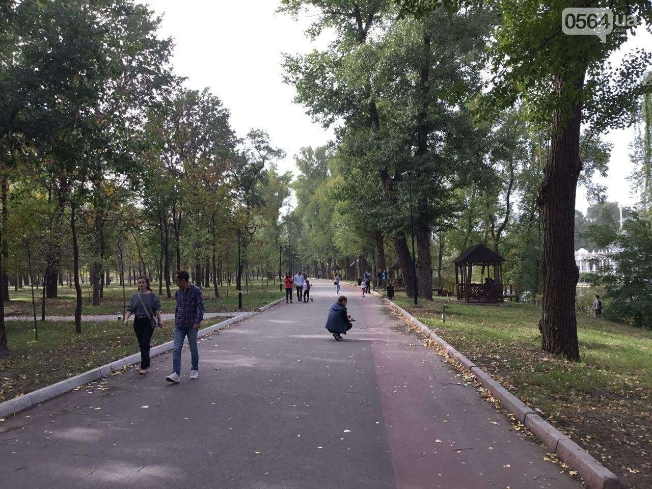 В Гданцевском парке наводят порядок. Как выглядит парк после покоса амброзии, - ФОТО, ВИДЕО, фото-3