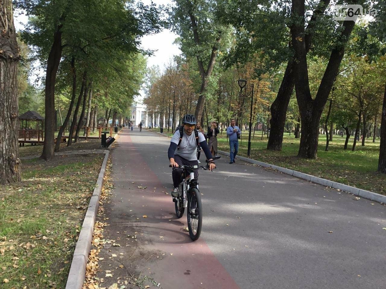 В Гданцевском парке наводят порядок. Как выглядит парк после покоса амброзии, - ФОТО, ВИДЕО, фото-4