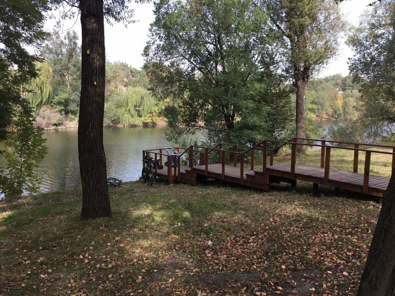 В Гданцевском парке наводят порядок. Как выглядит парк после покоса амброзии, - ФОТО, ВИДЕО, фото-5
