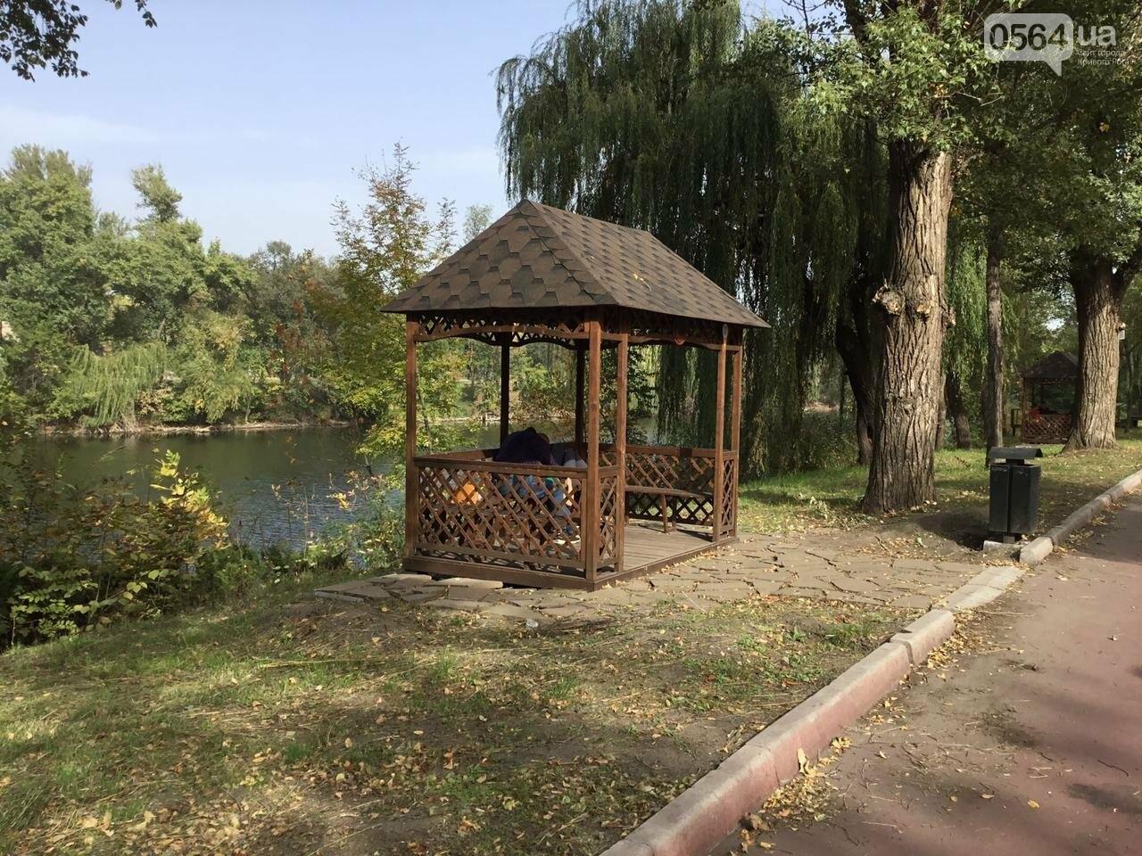 В Гданцевском парке наводят порядок. Как выглядит парк после покоса амброзии, - ФОТО, ВИДЕО, фото-7