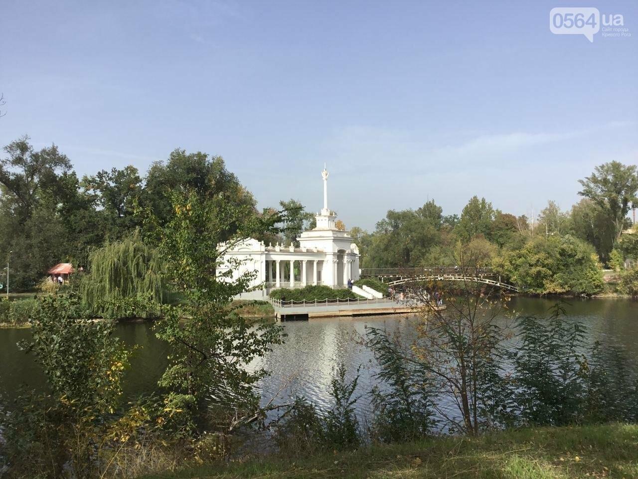 В Гданцевском парке наводят порядок. Как выглядит парк после покоса амброзии, - ФОТО, ВИДЕО, фото-9