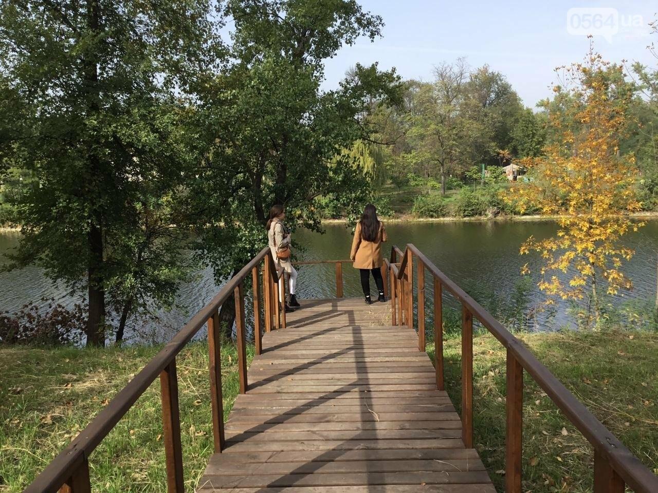 В Гданцевском парке наводят порядок. Как выглядит парк после покоса амброзии, - ФОТО, ВИДЕО, фото-11