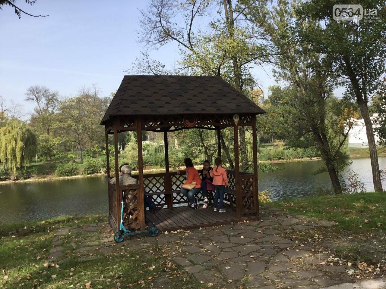 В Гданцевском парке наводят порядок. Как выглядит парк после покоса амброзии, - ФОТО, ВИДЕО, фото-12