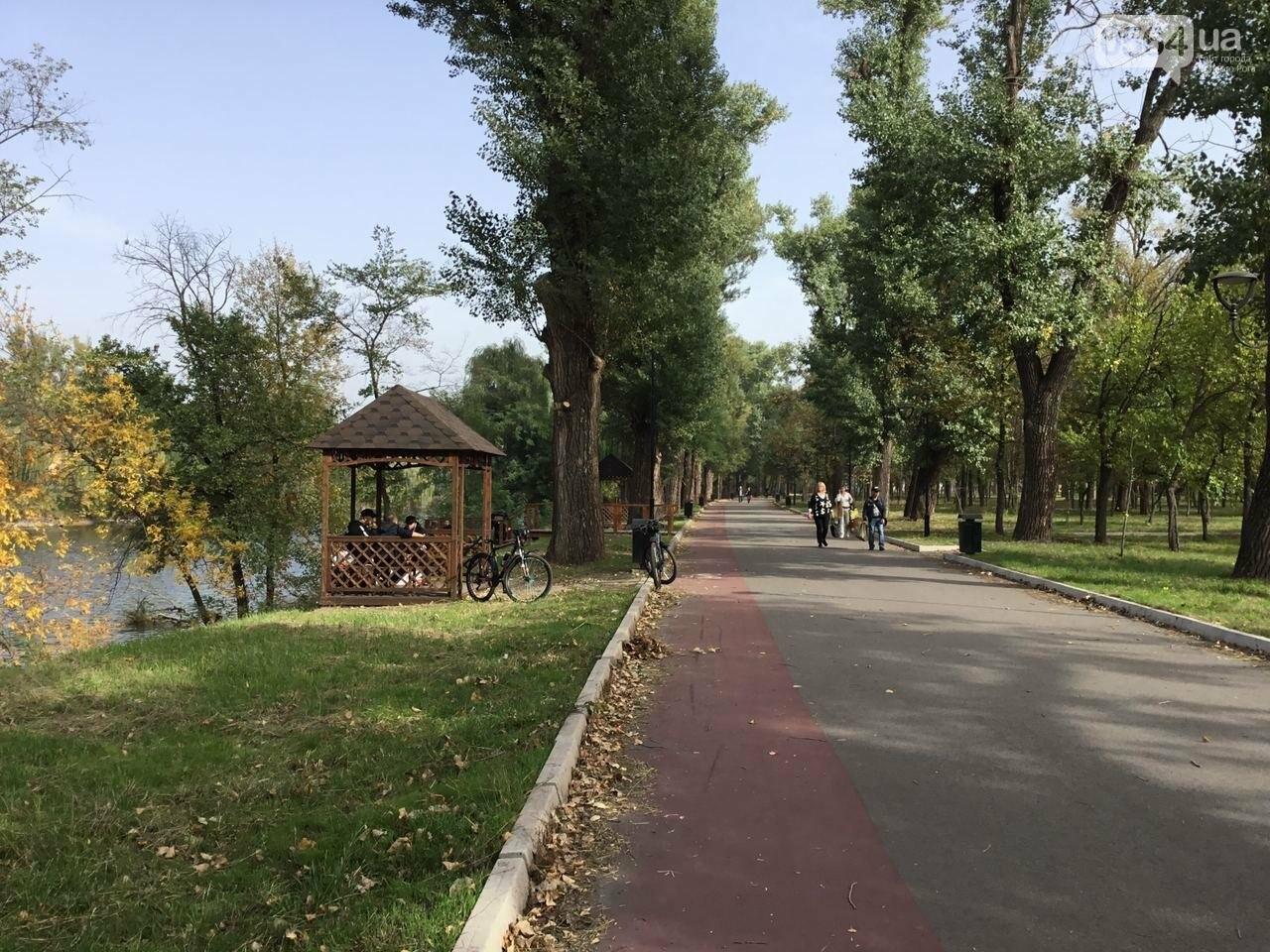 В Гданцевском парке наводят порядок. Как выглядит парк после покоса амброзии, - ФОТО, ВИДЕО, фото-13