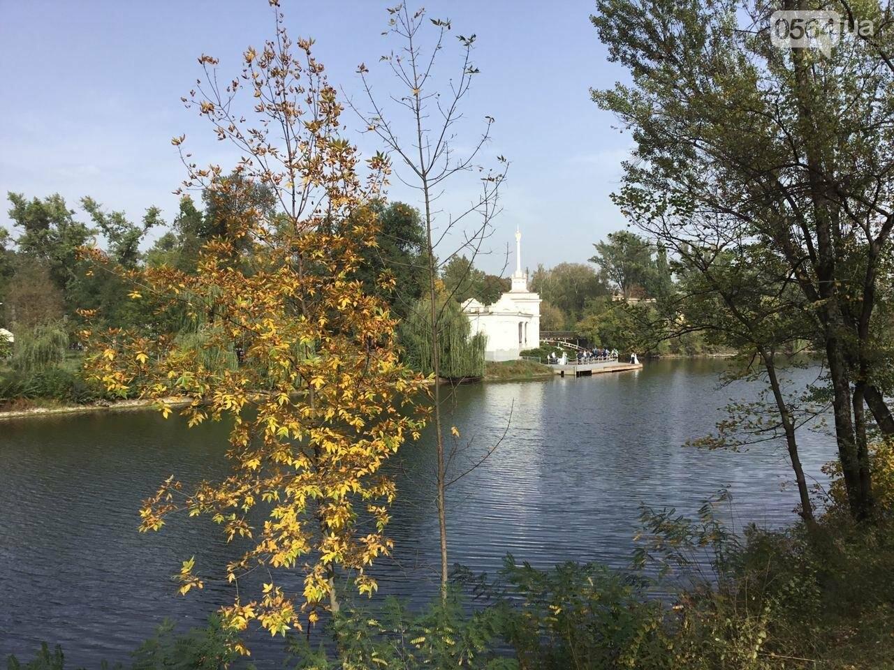 В Гданцевском парке наводят порядок. Как выглядит парк после покоса амброзии, - ФОТО, ВИДЕО, фото-14