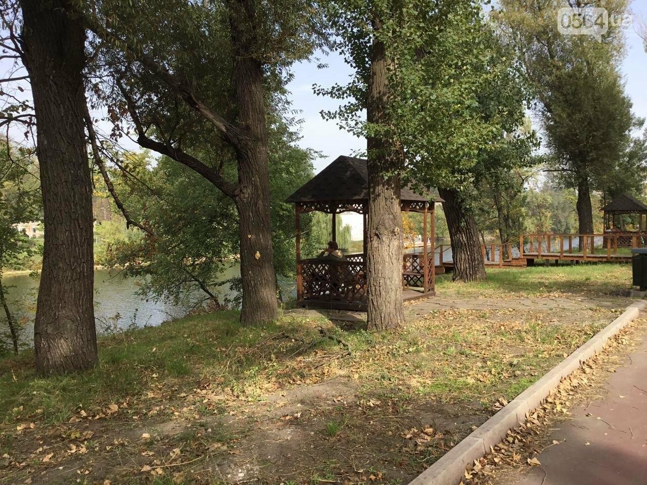 В Гданцевском парке наводят порядок. Как выглядит парк после покоса амброзии, - ФОТО, ВИДЕО, фото-15