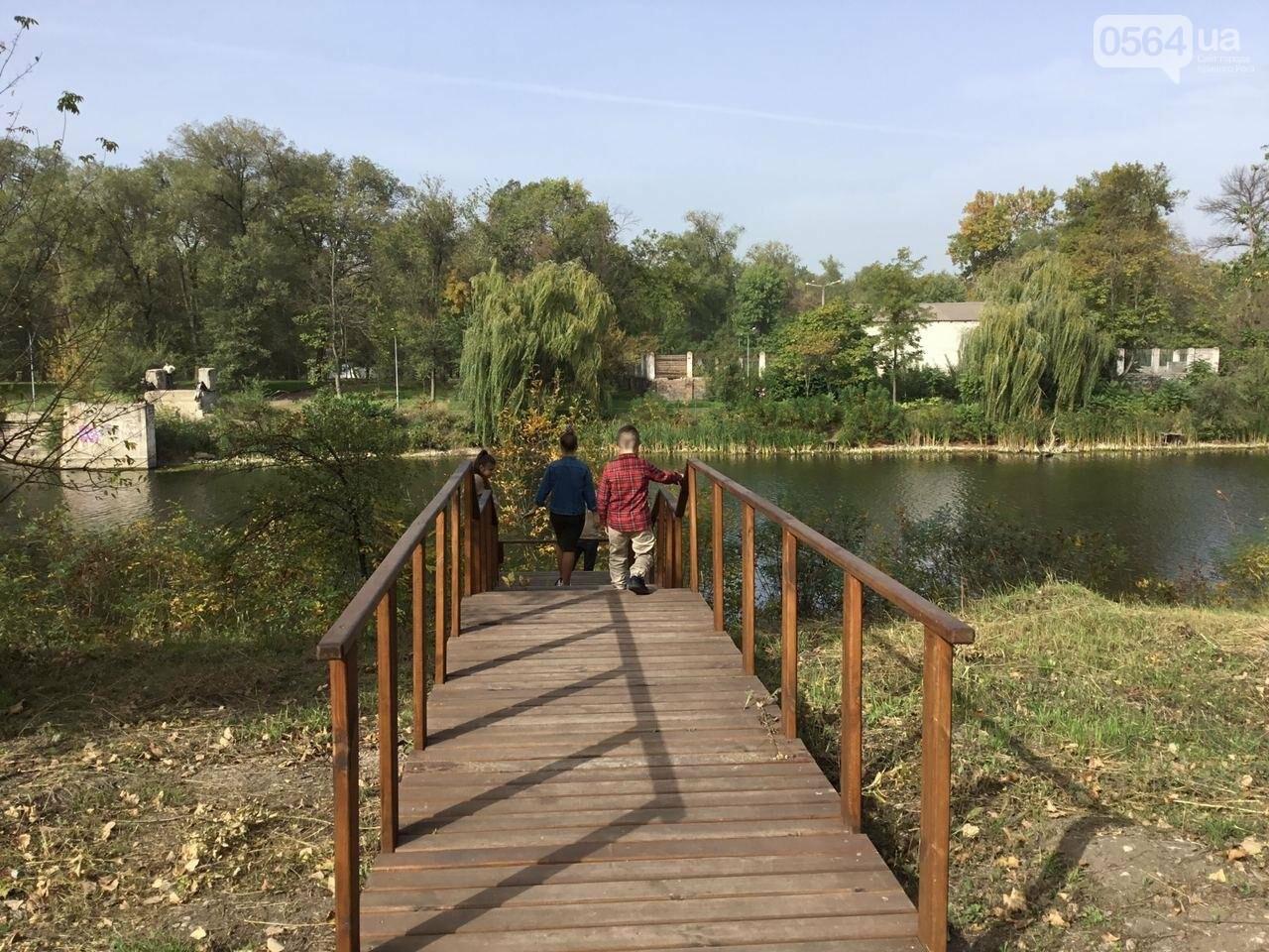 В Гданцевском парке наводят порядок. Как выглядит парк после покоса амброзии, - ФОТО, ВИДЕО, фото-17