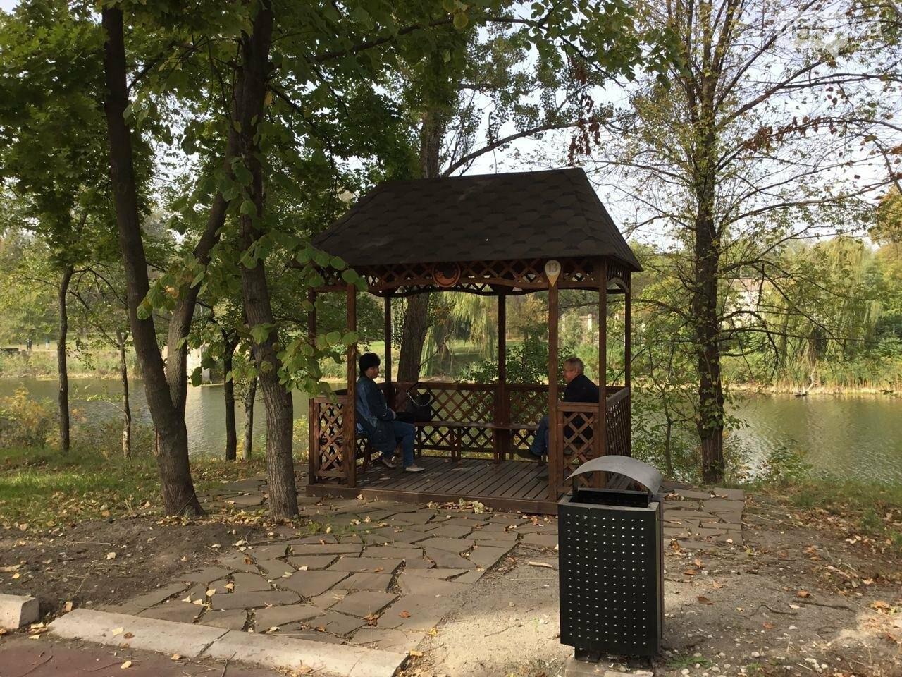 В Гданцевском парке наводят порядок. Как выглядит парк после покоса амброзии, - ФОТО, ВИДЕО, фото-18