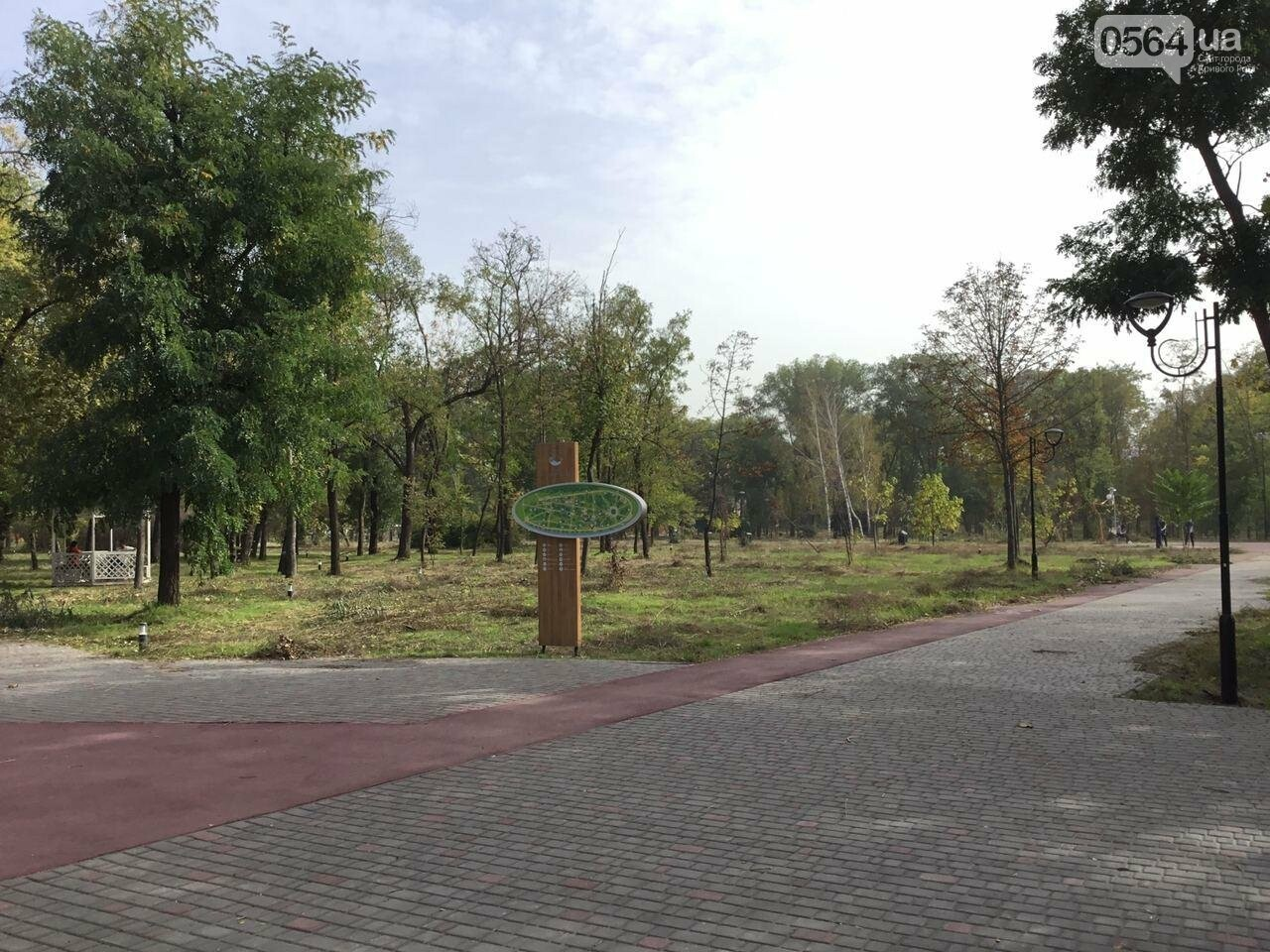 В Гданцевском парке наводят порядок. Как выглядит парк после покоса амброзии, - ФОТО, ВИДЕО, фото-19