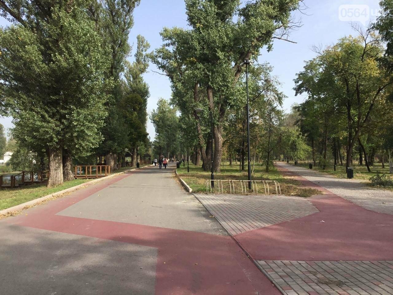 В Гданцевском парке наводят порядок. Как выглядит парк после покоса амброзии, - ФОТО, ВИДЕО, фото-20