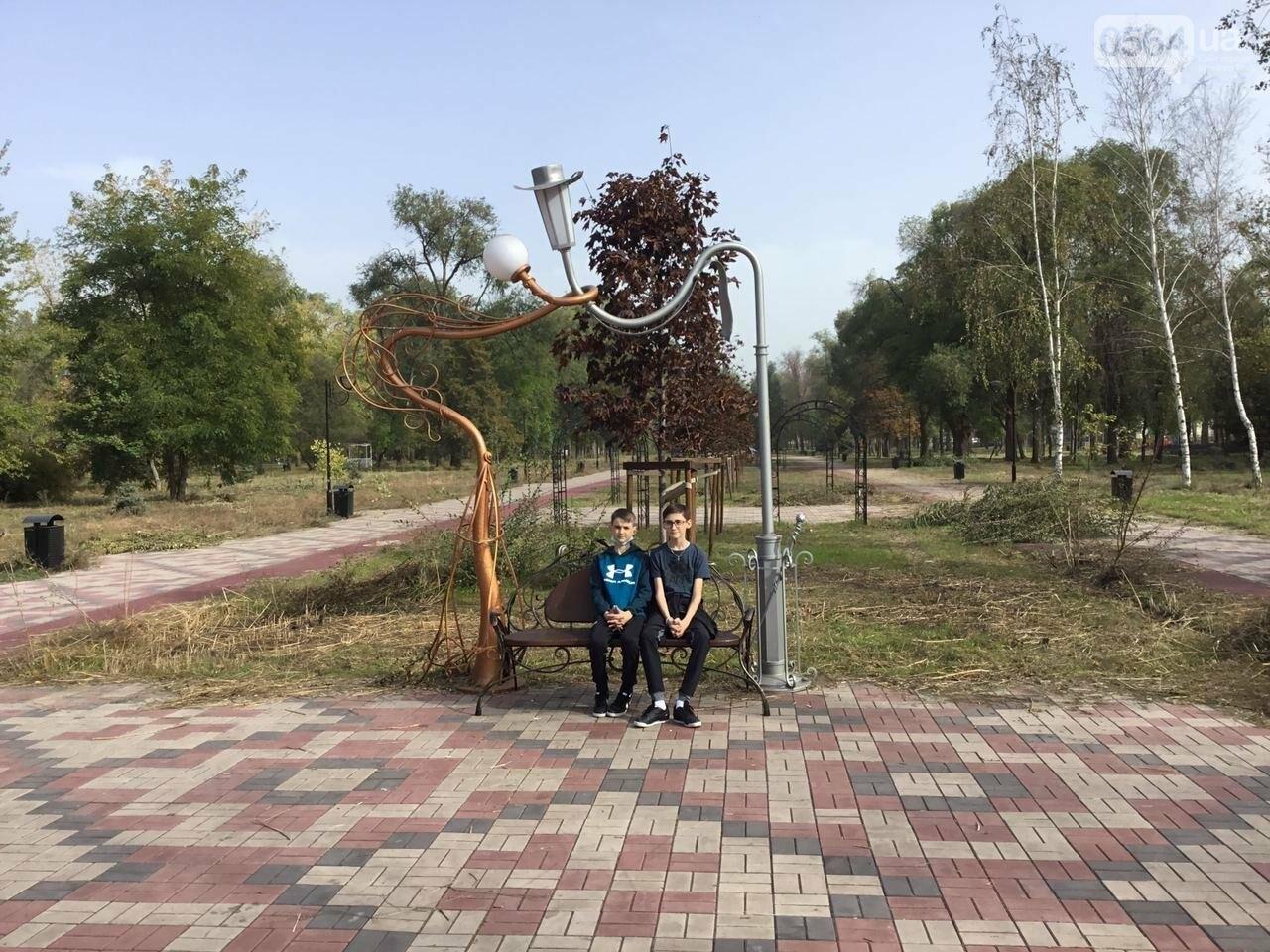 В Гданцевском парке наводят порядок. Как выглядит парк после покоса амброзии, - ФОТО, ВИДЕО, фото-23