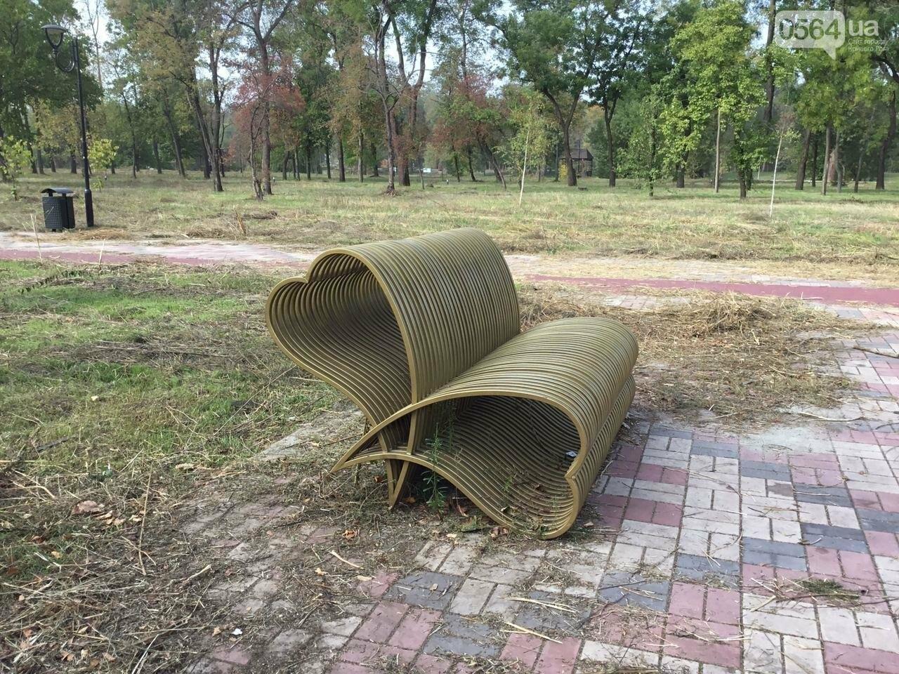 В Гданцевском парке наводят порядок. Как выглядит парк после покоса амброзии, - ФОТО, ВИДЕО, фото-24
