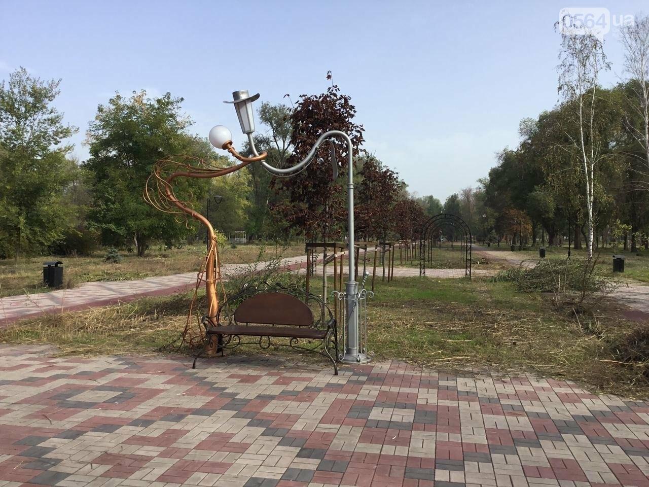 В Гданцевском парке наводят порядок. Как выглядит парк после покоса амброзии, - ФОТО, ВИДЕО, фото-25