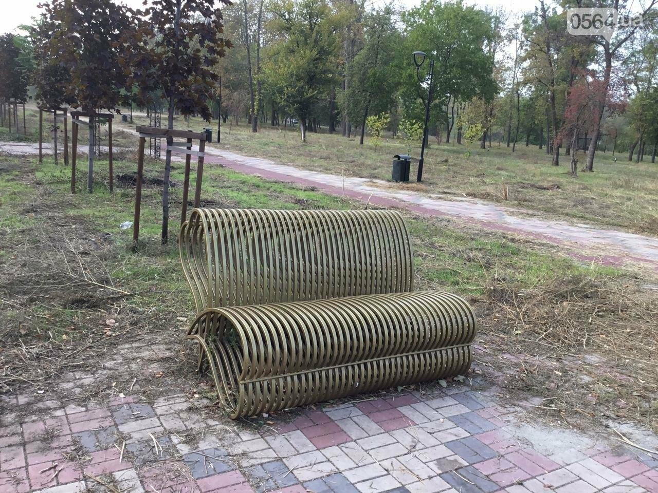 В Гданцевском парке наводят порядок. Как выглядит парк после покоса амброзии, - ФОТО, ВИДЕО, фото-26