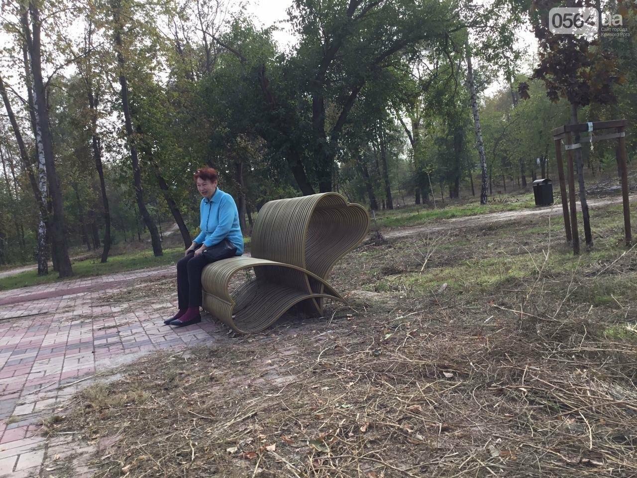 В Гданцевском парке наводят порядок. Как выглядит парк после покоса амброзии, - ФОТО, ВИДЕО, фото-27
