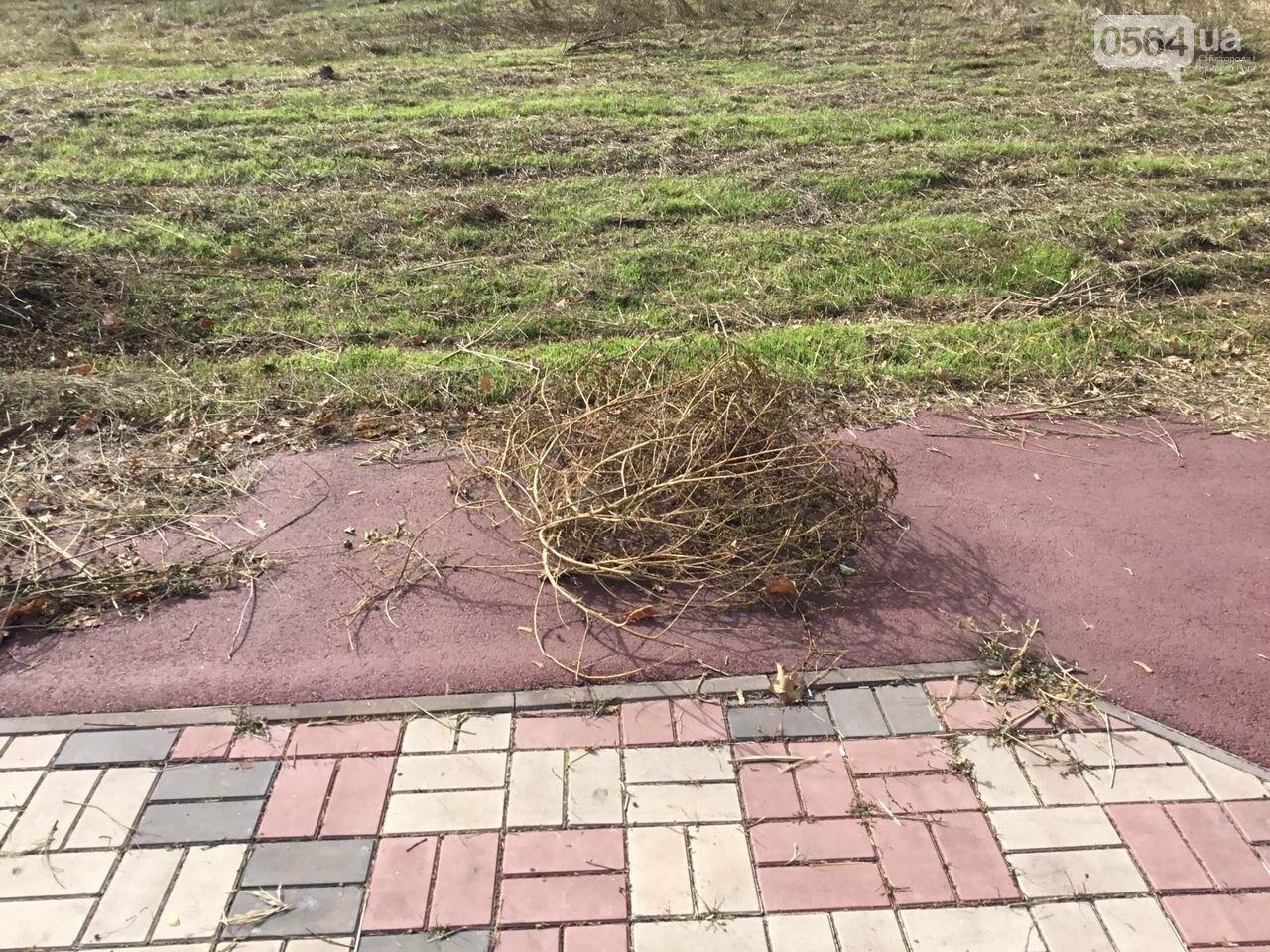 В Гданцевском парке наводят порядок. Как выглядит парк после покоса амброзии, - ФОТО, ВИДЕО, фото-33