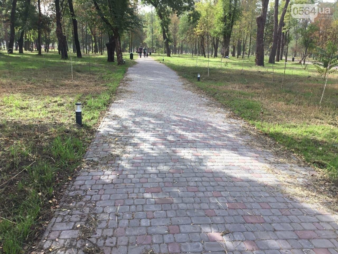 В Гданцевском парке наводят порядок. Как выглядит парк после покоса амброзии, - ФОТО, ВИДЕО, фото-36