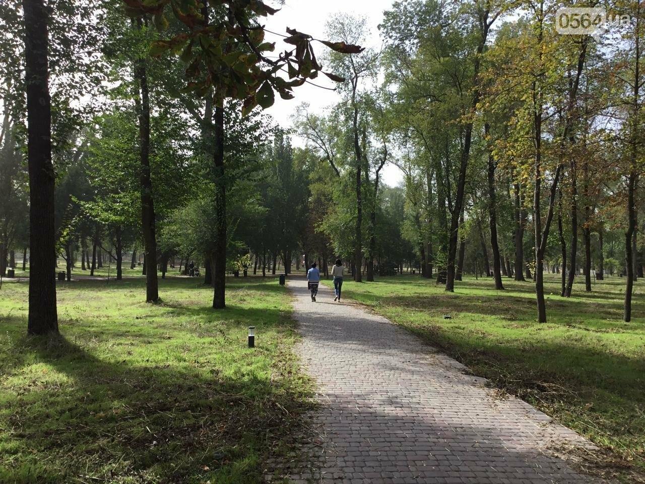 В Гданцевском парке наводят порядок. Как выглядит парк после покоса амброзии, - ФОТО, ВИДЕО, фото-40