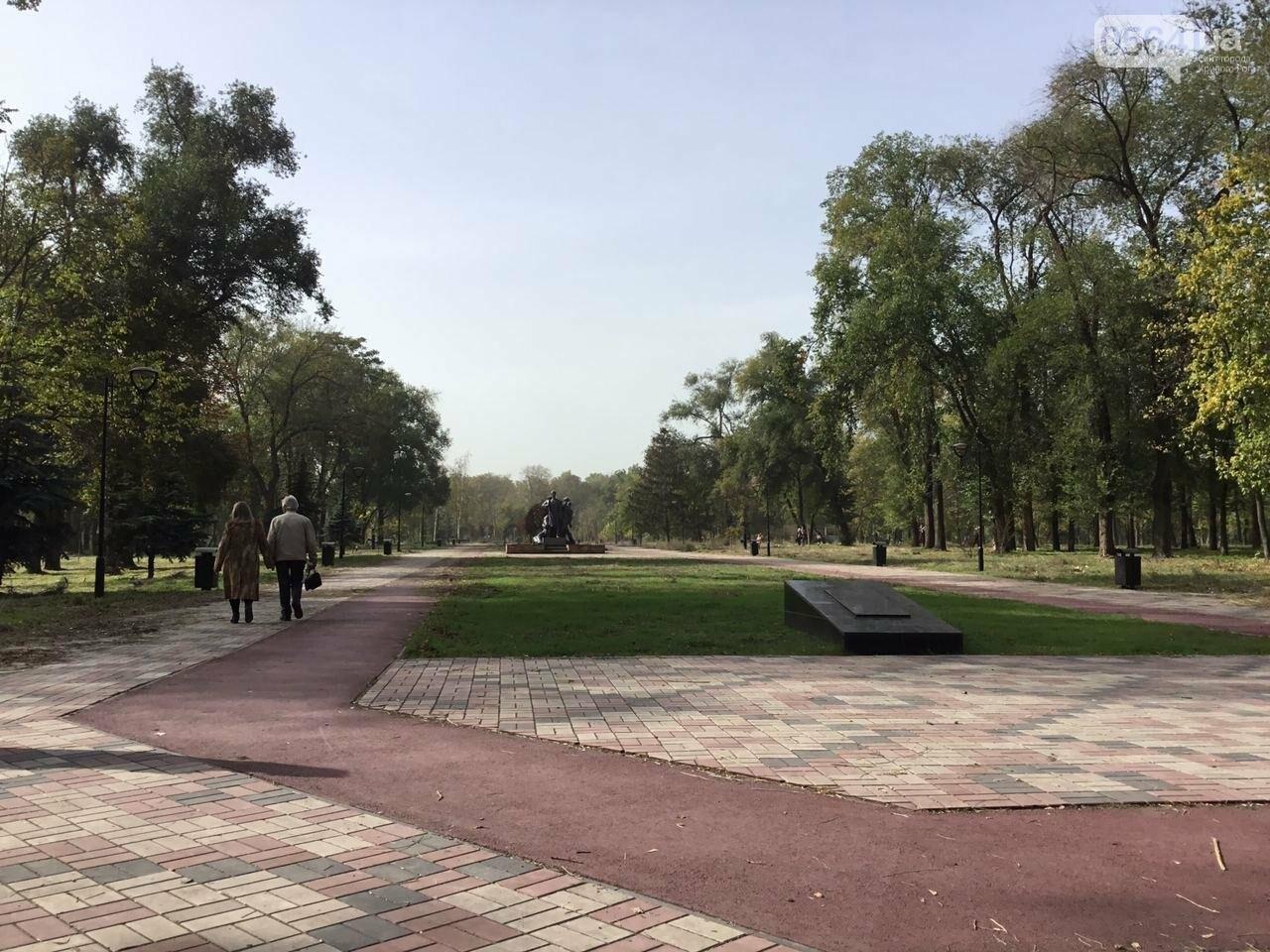 В Гданцевском парке наводят порядок. Как выглядит парк после покоса амброзии, - ФОТО, ВИДЕО, фото-43