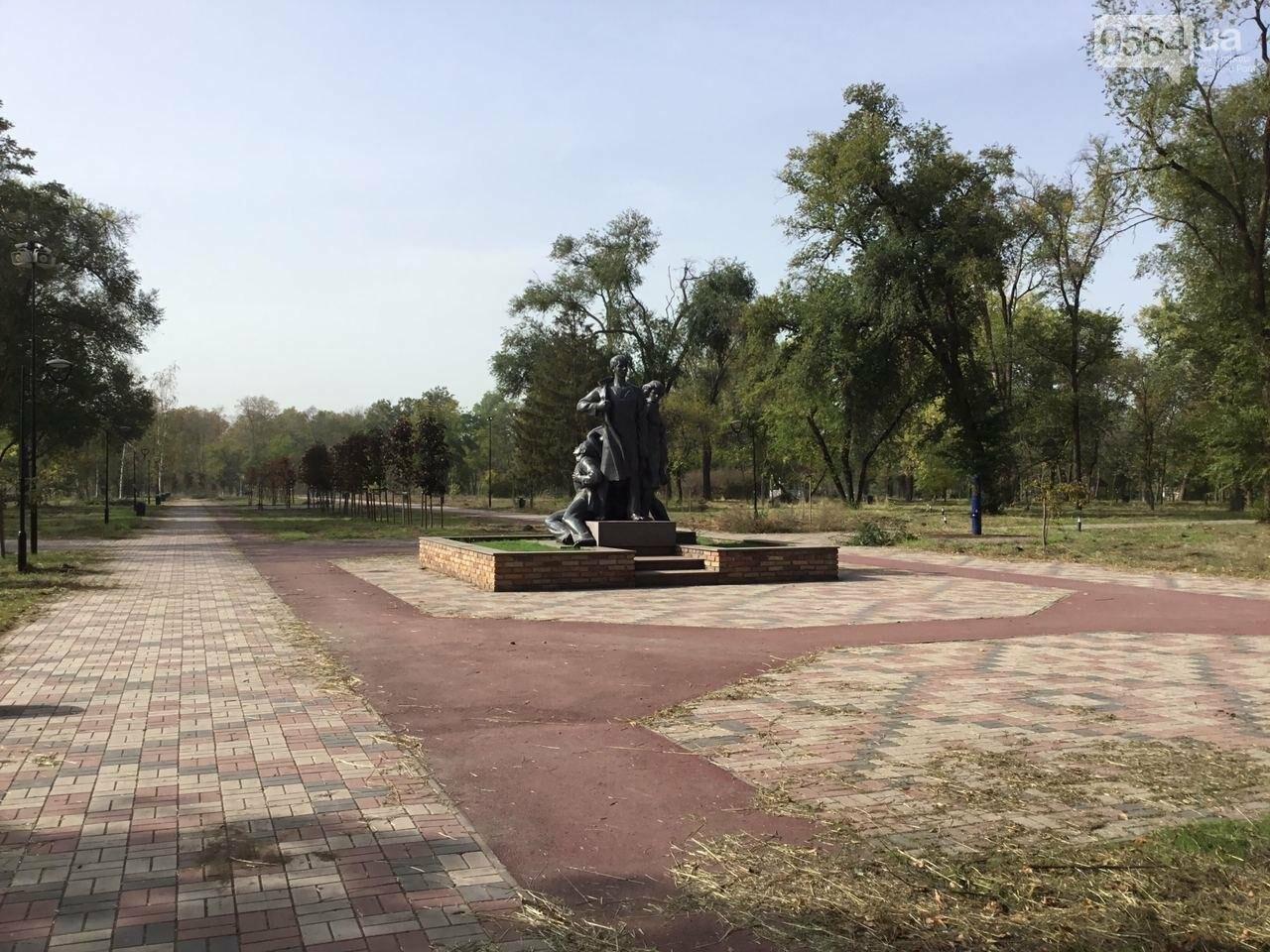 В Гданцевском парке наводят порядок. Как выглядит парк после покоса амброзии, - ФОТО, ВИДЕО, фото-44