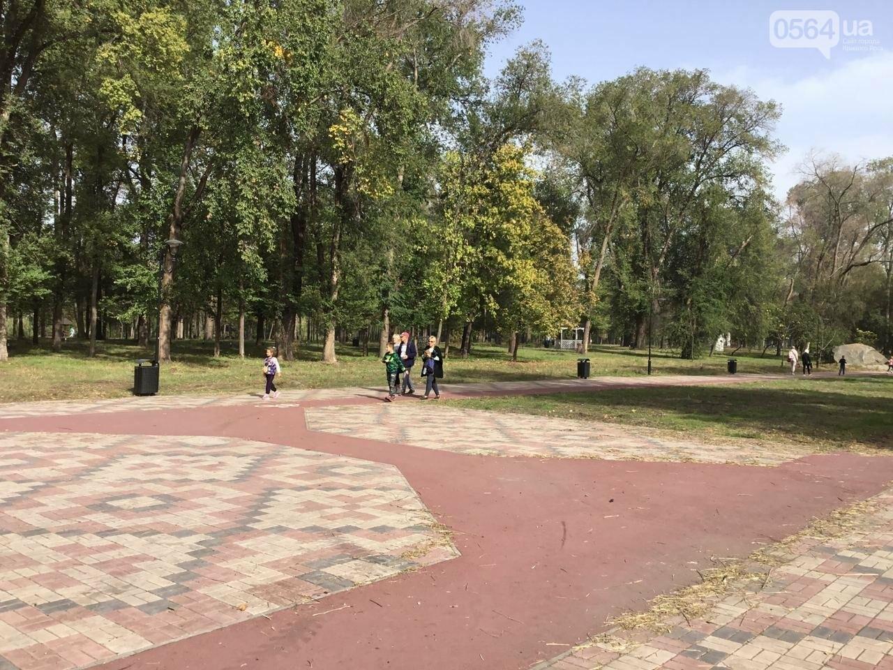 В Гданцевском парке наводят порядок. Как выглядит парк после покоса амброзии, - ФОТО, ВИДЕО, фото-46