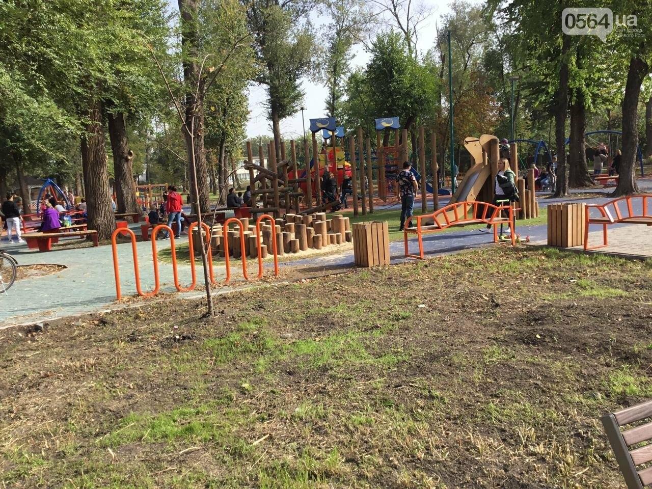 В Гданцевском парке наводят порядок. Как выглядит парк после покоса амброзии, - ФОТО, ВИДЕО, фото-49