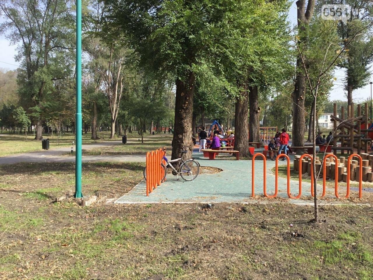 В Гданцевском парке наводят порядок. Как выглядит парк после покоса амброзии, - ФОТО, ВИДЕО, фото-50