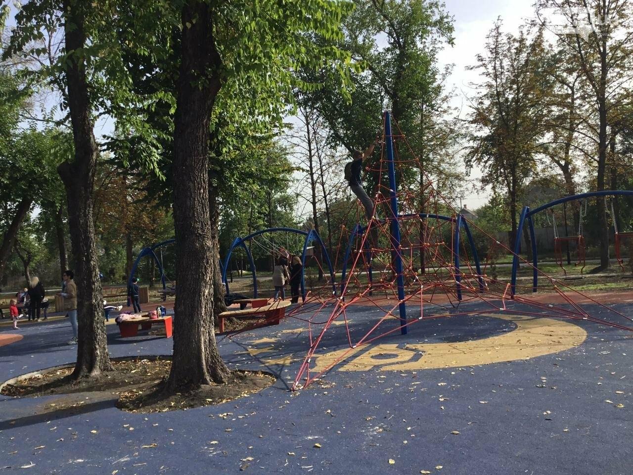 В Гданцевском парке наводят порядок. Как выглядит парк после покоса амброзии, - ФОТО, ВИДЕО, фото-51