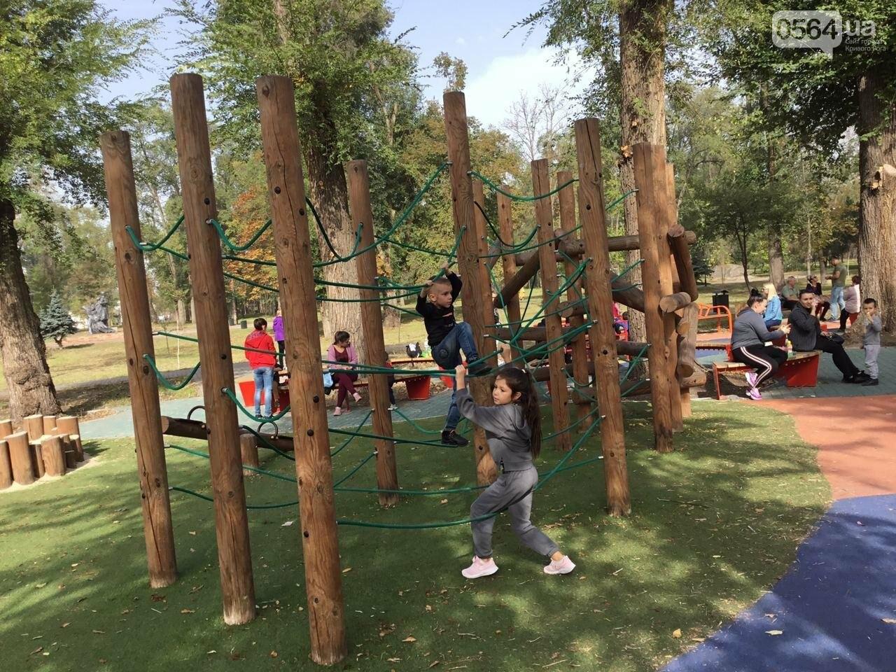 В Гданцевском парке наводят порядок. Как выглядит парк после покоса амброзии, - ФОТО, ВИДЕО, фото-53