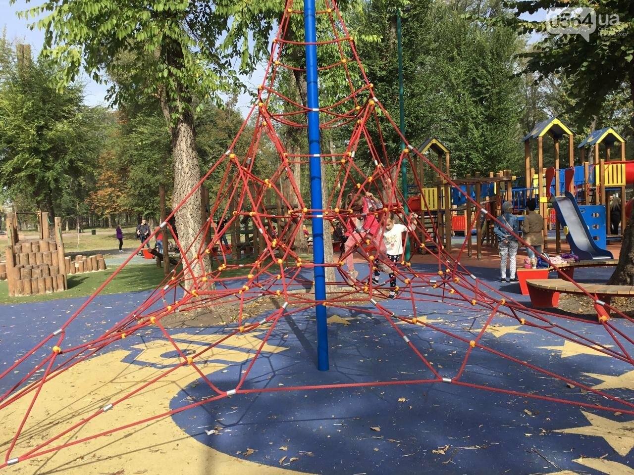 В Гданцевском парке наводят порядок. Как выглядит парк после покоса амброзии, - ФОТО, ВИДЕО, фото-54