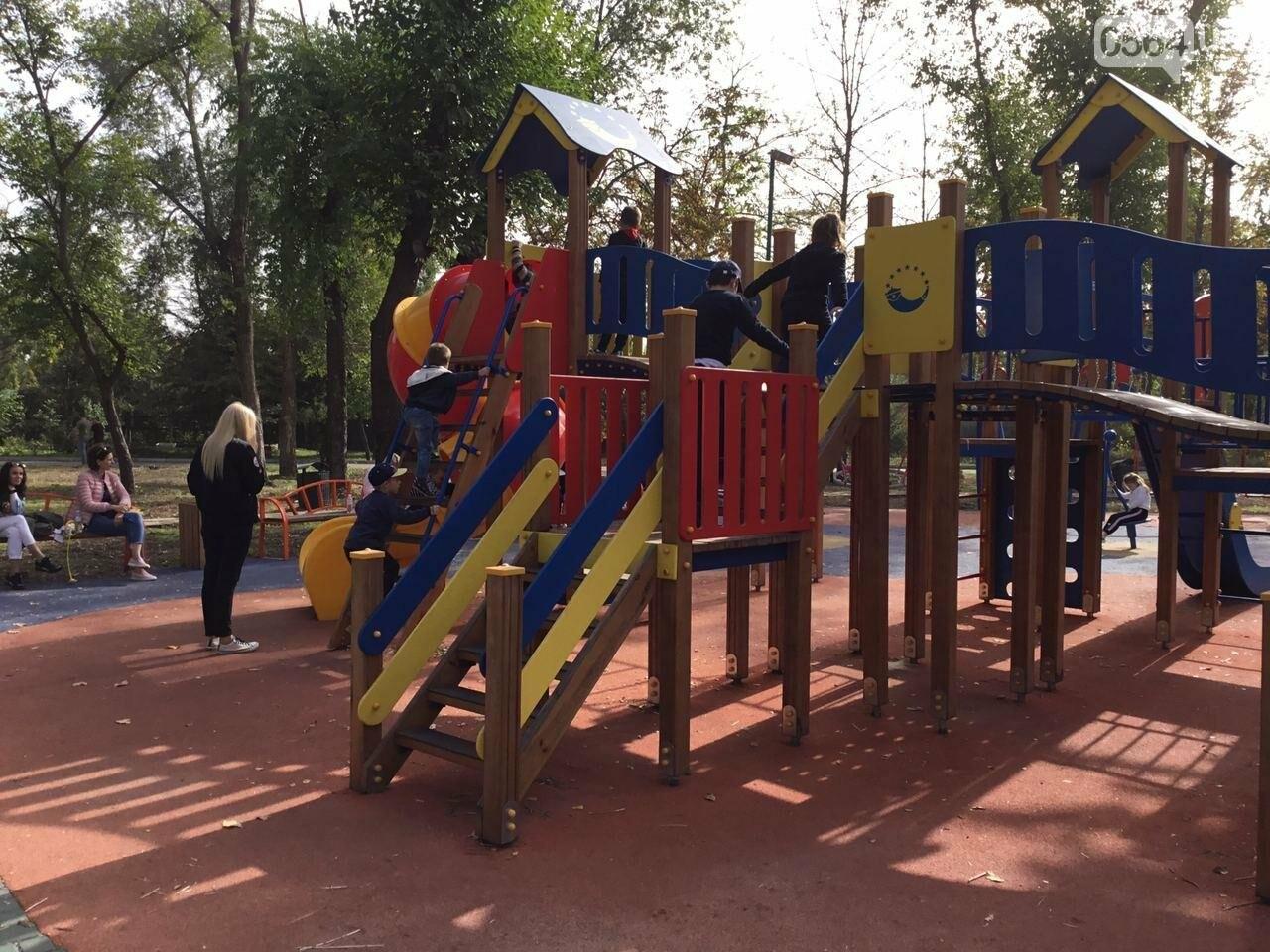 В Гданцевском парке наводят порядок. Как выглядит парк после покоса амброзии, - ФОТО, ВИДЕО, фото-57
