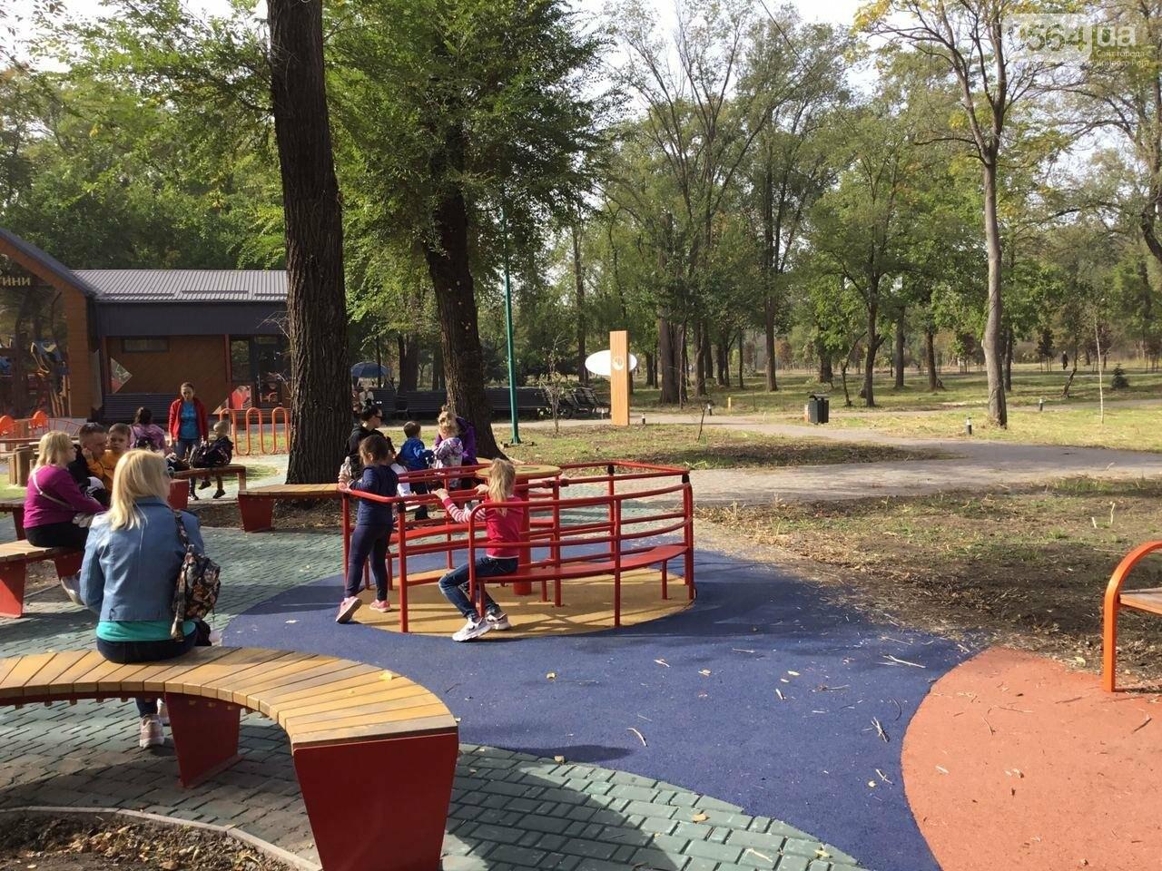 В Гданцевском парке наводят порядок. Как выглядит парк после покоса амброзии, - ФОТО, ВИДЕО, фото-58