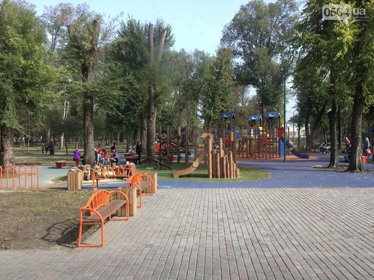 В Гданцевском парке наводят порядок. Как выглядит парк после покоса амброзии, - ФОТО, ВИДЕО, фото-63