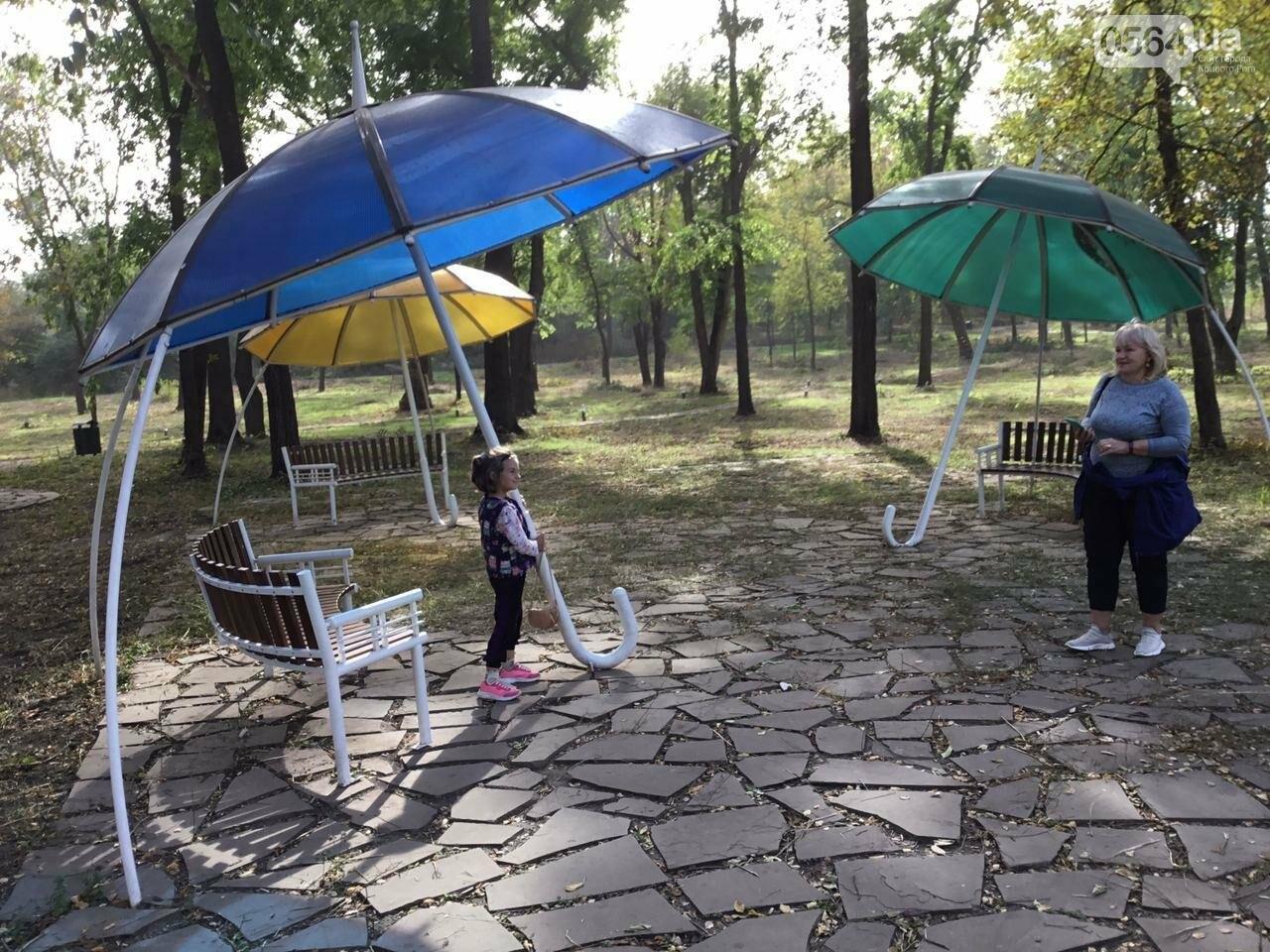 В Гданцевском парке наводят порядок. Как выглядит парк после покоса амброзии, - ФОТО, ВИДЕО, фото-64