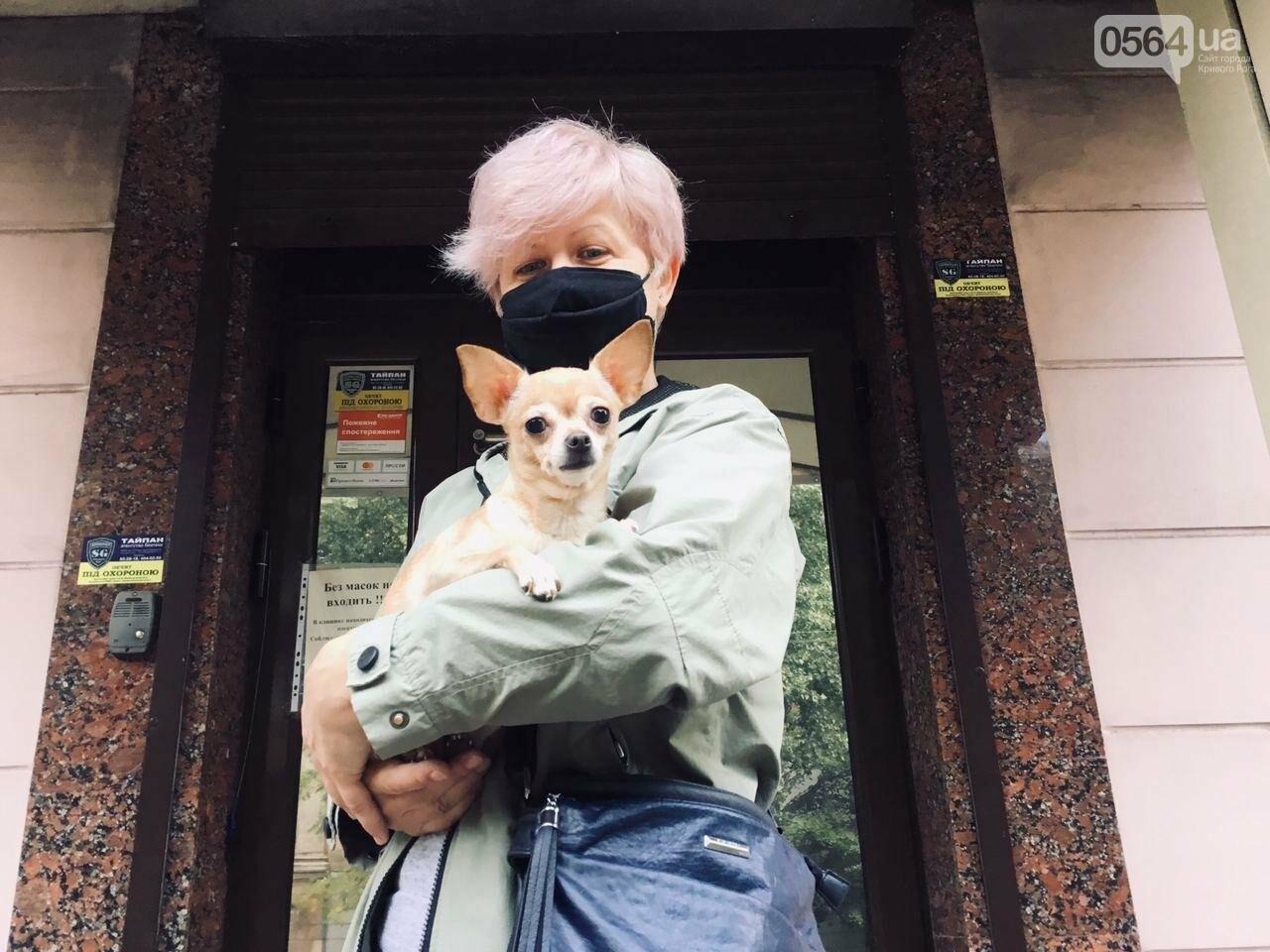 """""""Лямур тужур"""" или непридуманные истории о том, как ветеринарный врач в Кривом Роге спас Лолиту, Блэка и Рябчика, - ФОТО, фото-5"""