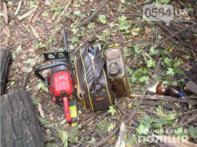 """Для вырубки деревьев в Кривом Роге использовали справку """"сомнительного характера"""", фото-2"""