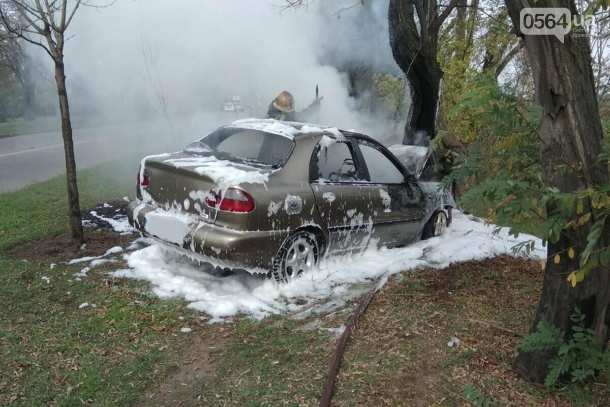 В Кривом Роге автомобиль влетел в дерево и загорелся. Водитель скрылся с места ДТП, - ФОТО, фото-1