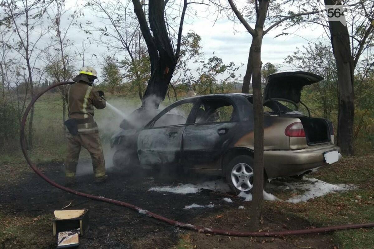 В Кривом Роге автомобиль влетел в дерево и загорелся. Водитель скрылся с места ДТП, - ФОТО, фото-3